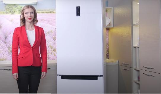 Ремонт холодильников Пермь на дому цены