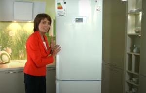 Ремонт холодильников Закамск